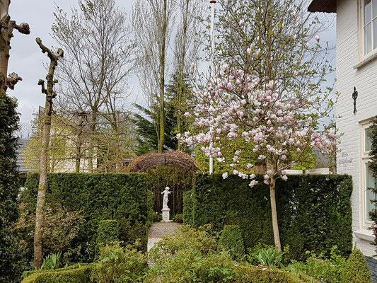 tulip tour of holland
