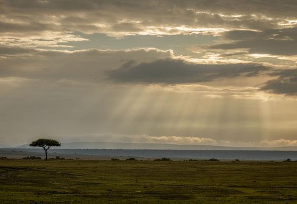 Gewitter Masai Mara, Kenia
