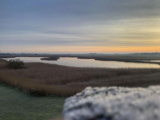 Fotografin in Uelvesbüll - Husum - Nordfriesland