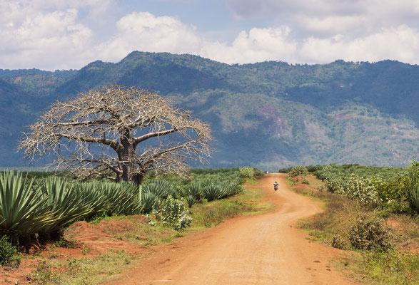 Tansania - demipress Foto Frauenreise