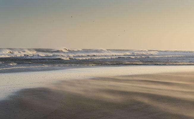 Langeoog fotografiert mit Nikon Z7 und Z6 und Nikkor Z 85mm f/1.8 S und Nikkor Z 24-70 mm 1:2,8 S