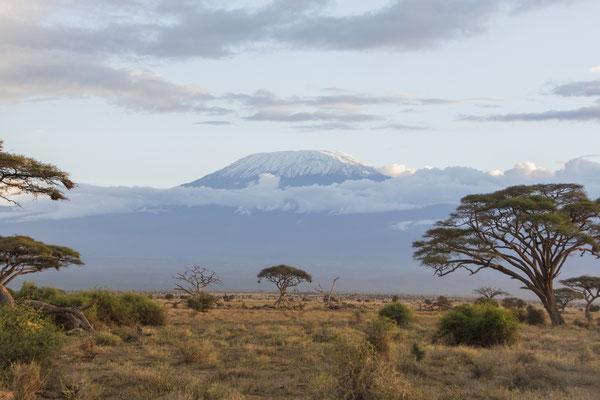 Tourismusbüro Kenia  ... Kilimanjaro