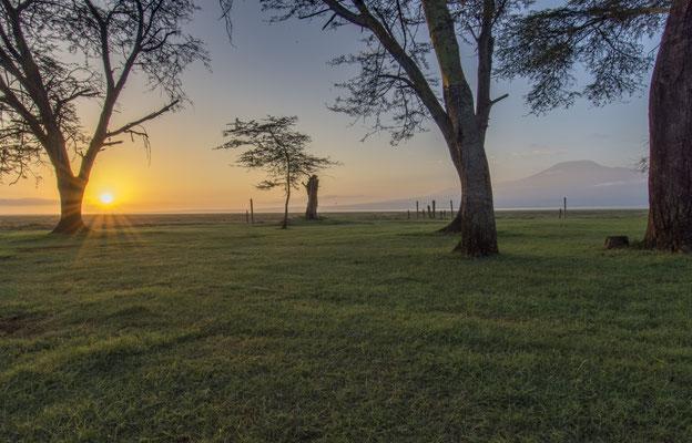Sonnenaufgang Amboseli