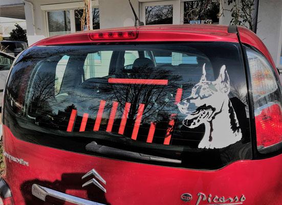 Hundebox +L2+ 3.1 für Citroen Picasso