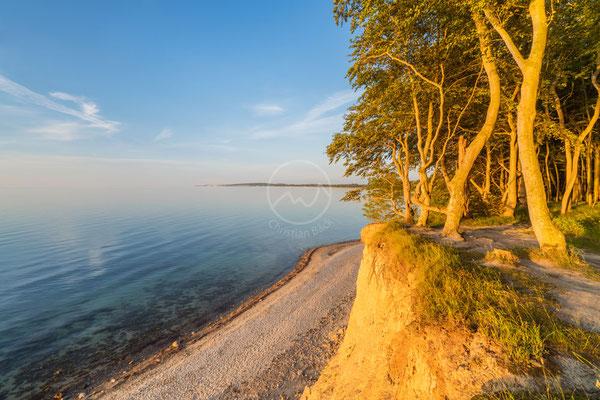 Steilufer bei Kiel | Nordsee