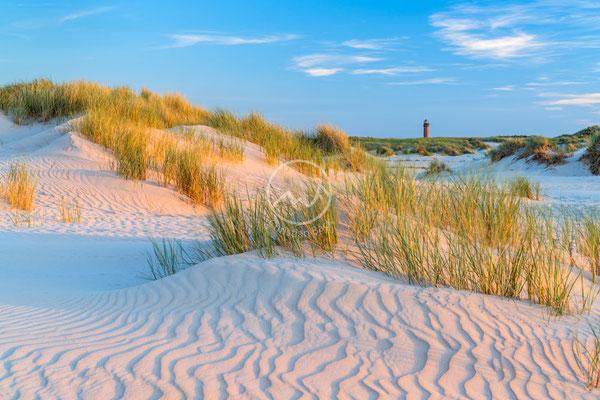 Dünen und Leuchtturm auf der Insel Norderney | Nordsee