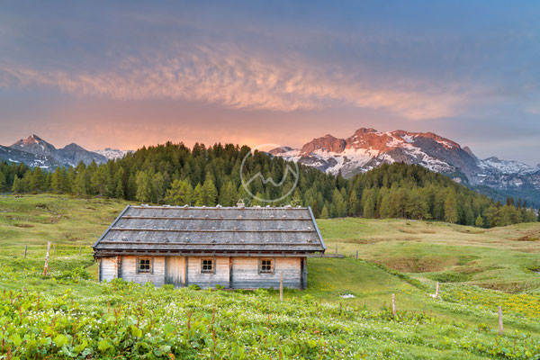 #31 Alm vor Funtenseetauern, Berchtesgadener Alpen
