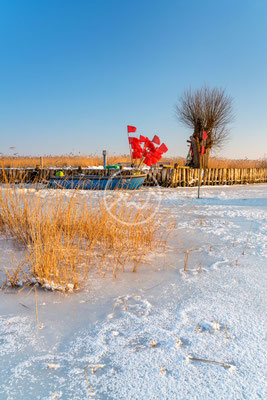 Hafen auf der Insel Usedom | Ostsee
