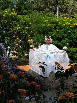 los colibris un jardin paradisiaque au panama