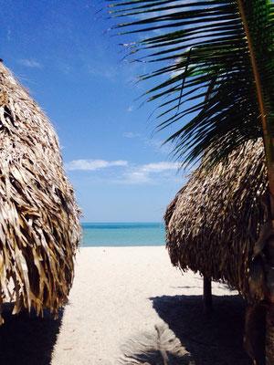 el palmar plage panama