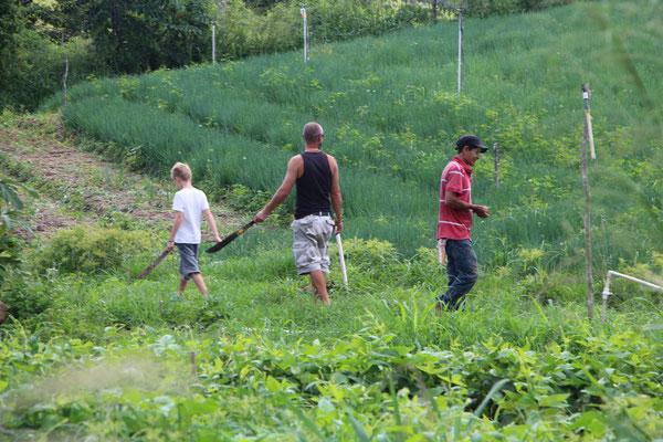 activités famille panama