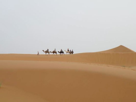 Cameltrek - Solomarruecos.com