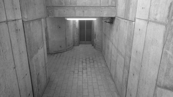 ein Traum in grau: Bad Schandau