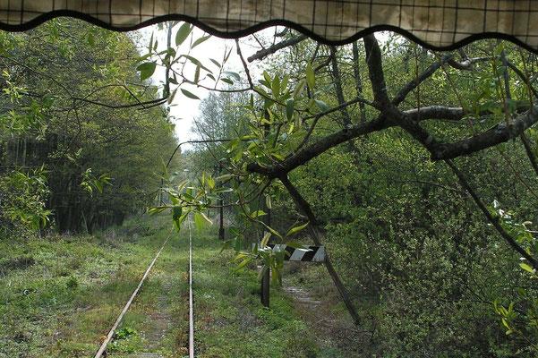 Haffuferbahn