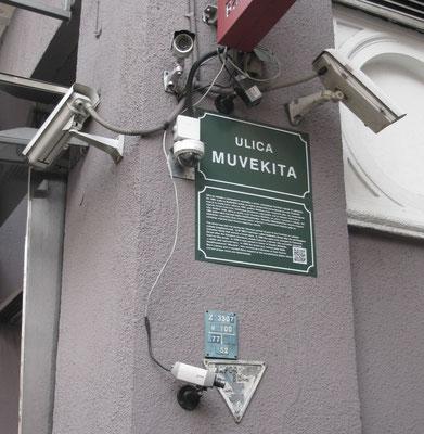 Überwachungswahn
