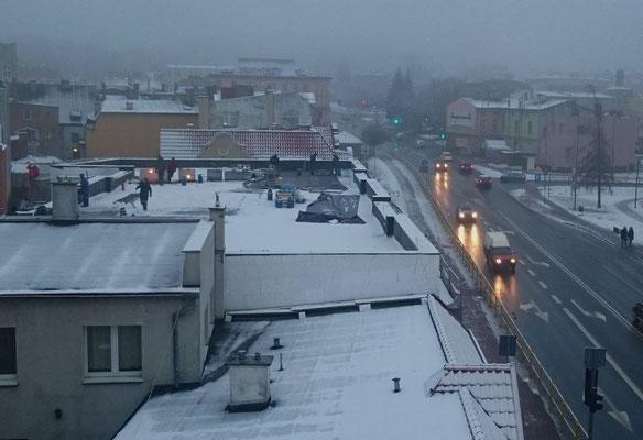 emsiges Treiben auf dem Dach gegenüber
