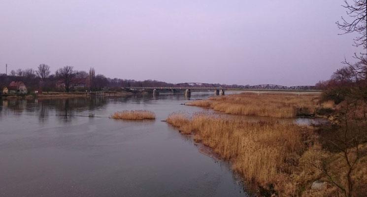 Oder mit leichtem Hochwasser, Brücke von Deutschland nach Polen