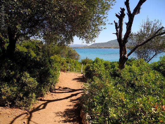 Monolia-die größte der Inseln-Euböa-Griechenland-Blick zur Westküste