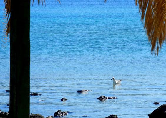 Monolia-die größte der Inseln-Euböa-Griechenland-Strand Ostküste