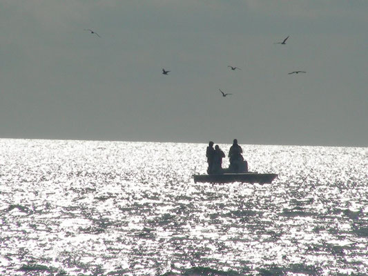 Fischerboot im Glitzermeer