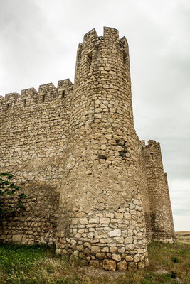 Tigranakert castle