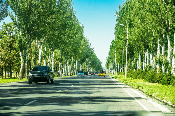 avenue outside Bishkek