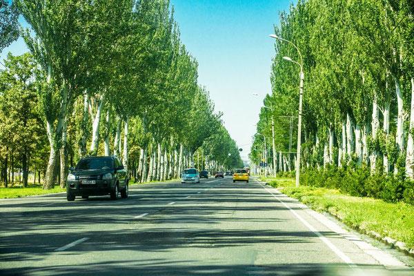 avenue outside Bishkek
