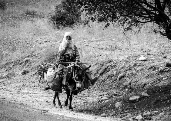 near the Septimius Severus bridge, Province of Adiyaman, Kurdistan - woman on a donkey