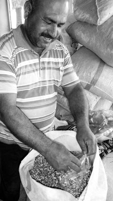 Gaziantep, Kurdistan - Pistachios plantation owner
