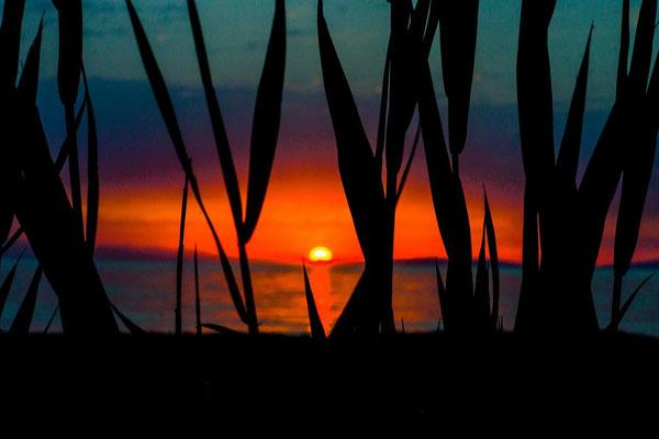 a stunning sunset