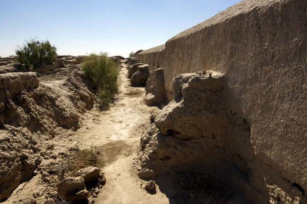 enclosure wall