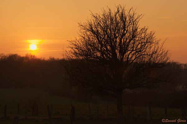 Couché de soleil en campagne Dervoise