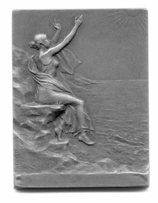 Henri Dubois: plaquette