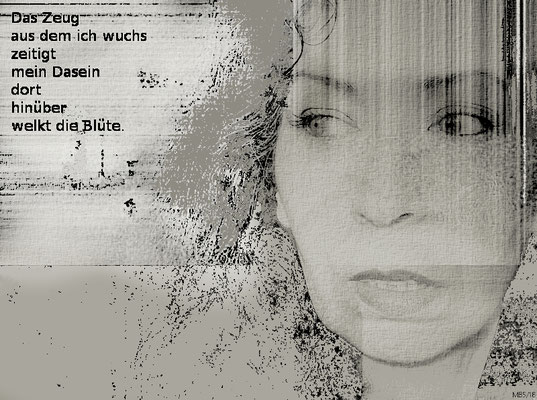 Selbst (Fotocollage)