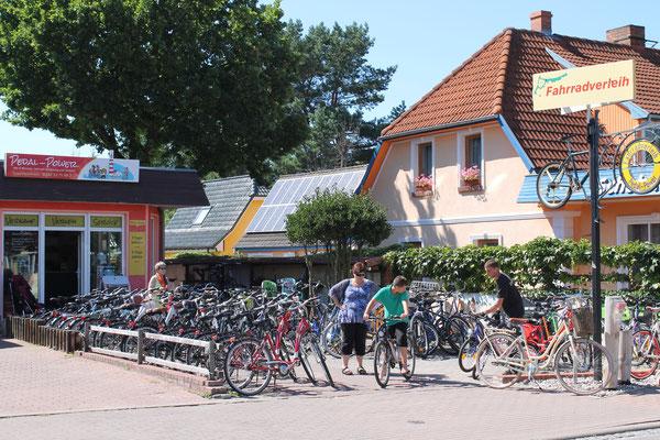 Fahrradverleih Pedal Power in Prerow