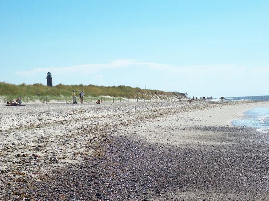 Darßer Weststrand - Blick auf den Leuchtturm