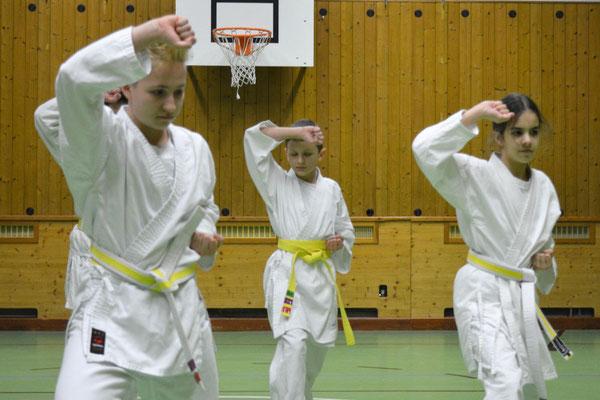 Karateprofis 1-14 Jahre bei Kata Kihon Technik Koordination