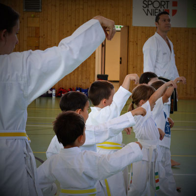 Volksschüler lernen spielerisch Kampfkunst