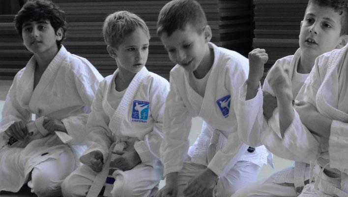 Karateprofi Little Tigers Volksschule, 6-10 Jahre