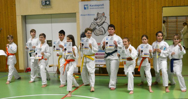 Karate Sport Tugenden Gürtelprüfungen 11-14 Jahre