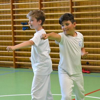 Technik, Koordination, Kampfkunst