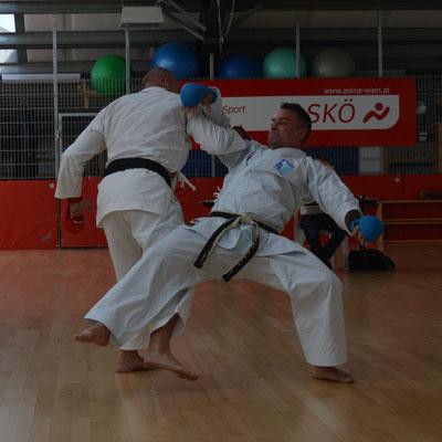 Martial Arts für Erwachsene, hier wettkampfnahe 50 und 40 Jahre