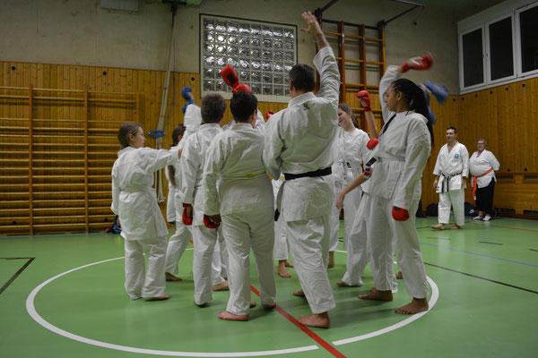 Sicherheit und Werte, Karate im Breitensport als Kampfkunst und zur Selbstverteidigung