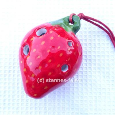 Erdbeere - Fokalink/Stein