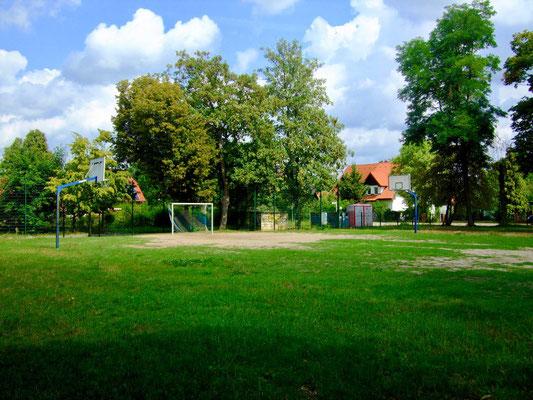 Freizi © Bruno-Hans Bürgel Grundschule Schöneiche 2019