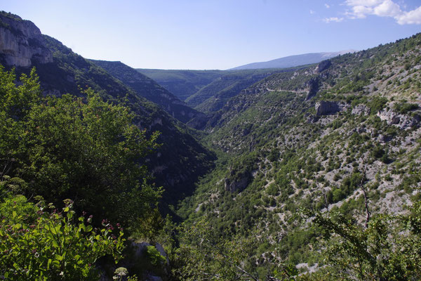The Nesque canyon and the Ventoux mountain