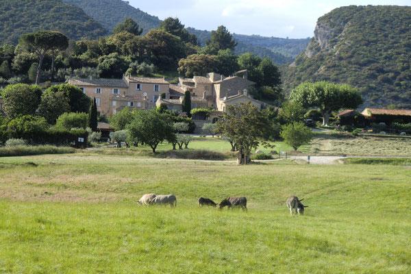 un hameau face à Lourmarin