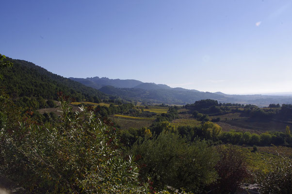 Blick auf das dentelles de Montmirail Gebirge aus das Dorf Séguret