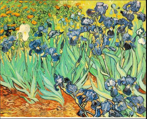 Les Iris by Van Gogh