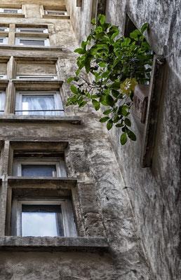Architecture Lyon